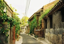Beijing Hutong Culture Activity